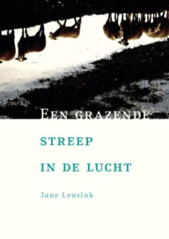 Een grazende streep in de lucht - Jane Leusink