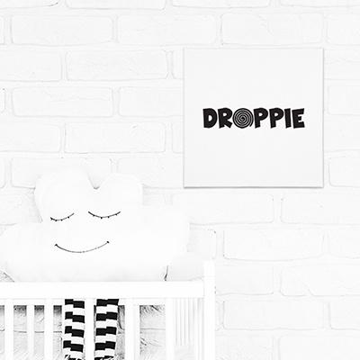 Canvas | Droppie