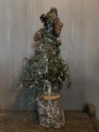 Landelijk Kerstboompje op Stam