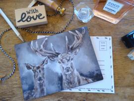 Postcard Edelhert met Hinde