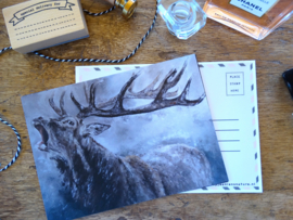 Postcard Burlend Hert