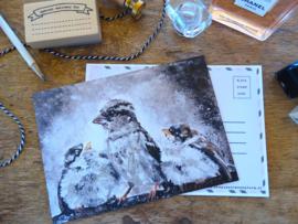 Postcard Musjes
