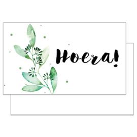 Hoera K5090003
