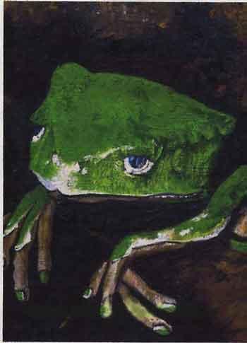 1998 - Groene kikker