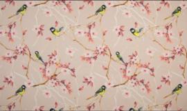 Japanse Roos & vogeltjes