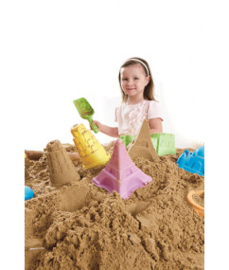 Zandbakvorm Toren van Pisa