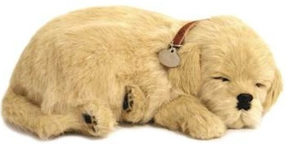 Perfect Petzzz hondje Golden retriever