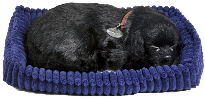Perfect Petzzz hondje labrador zwart