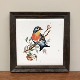 Vintage tegel met vogel