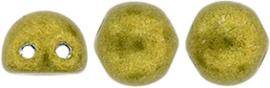 cm-2h044 ColorTrends:Saturated Metallic Meadowlark (14pc.)