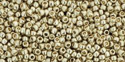 tr-15-pf558 PermaFinish-Galvanized Aluminum