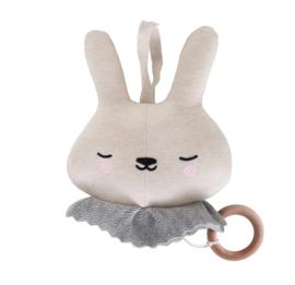 Eef Lillemor | Muziekmobiel Circus Bunny