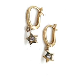 Gouden oorbellen met ster en zirkonia