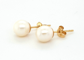 Cataleya Earrings Pearl 6mm