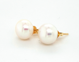 Cataleya Earrings Pearl  bouton 9mm