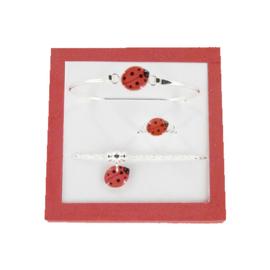 Zilveren Ladybug set