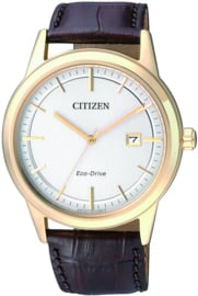 Citizen AW1233-01A - Horloge - 40 mm - Goudkleurig