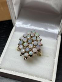 Geelgouden ring met opaal