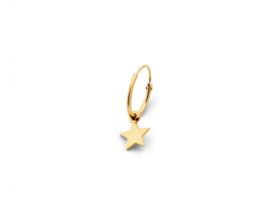 Just Franky Iconic Earring Star Charm