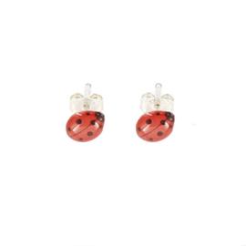 Zilveren Earrings Ladybug