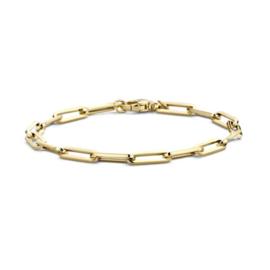 Blush Armband 2171YGO - Geelgoud (14Krt.)