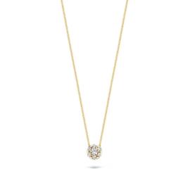 Blush Collier 3097YZI - Geel Goud (14Krt.) met Zirconia