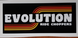 Evolution Sticker (12x5cm)