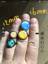 12 mm ring en 16 mm ring