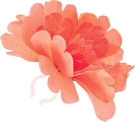 Bloem Basil Peony Flower  Met Clip Tangerine