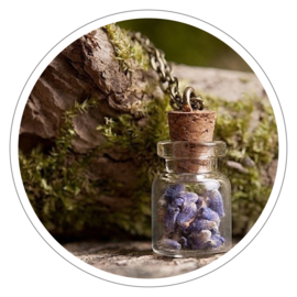 Make a Wish halsketting flesje