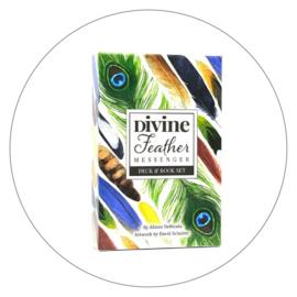 Orakelkaarten Divine feather messenger - Alison DeNicola