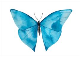 Blauw vlinder - kaart
