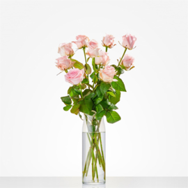 Losse roze rozen