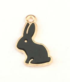 Black bunny