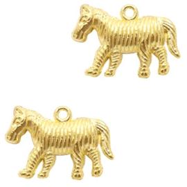 Zebra gold 1st