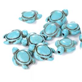 Blue turtle 10st