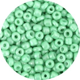 Kralen rocailles pastel green 3mm