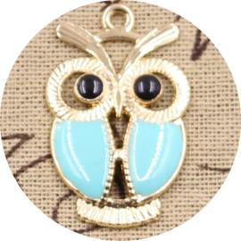 Blue owl 1st