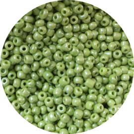 Rocailles shiny green 3mm