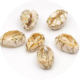 Kauri schelp White-gold
