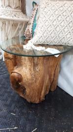 boomstamtafel glas