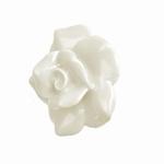 Deurknop witte roos  Ø 5 cm