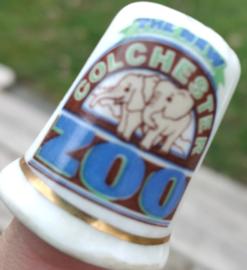 Vingerhoed - Bone China - Souvenir Colchester Zoo