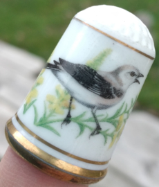 Vingerhoed - Franklin Mint - Tuinvogels - Spotlijster
