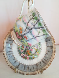 Royal Albert Silver Birch - Kop en schotel - Dames kop