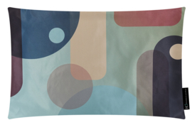 263 Pillow Roaring.2 60x40