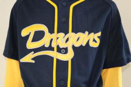 Mesh (gaatjes) wedstrijdshirt met korte mouw en Dragons logo