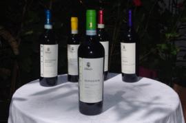 Dindo - Valpolicella Classico