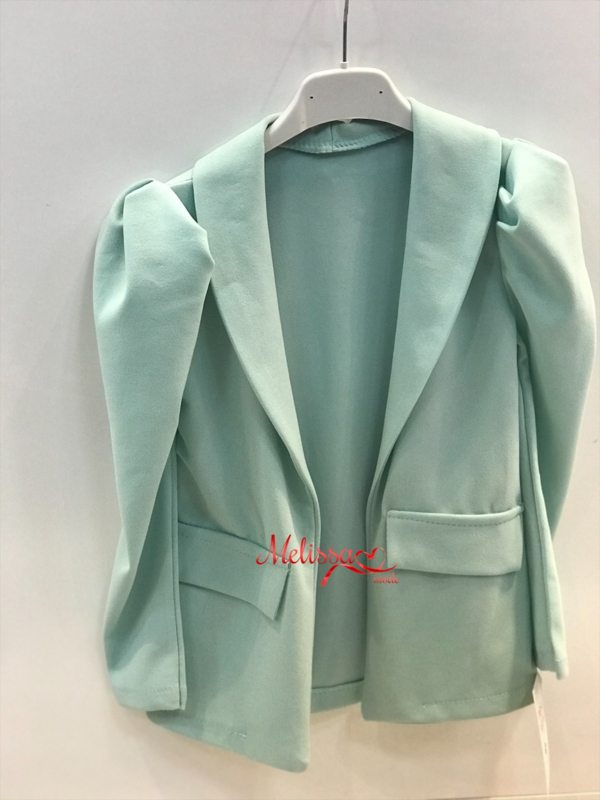 'Chantal 'Groen blazer.