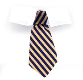 Katten stropdas gestreept